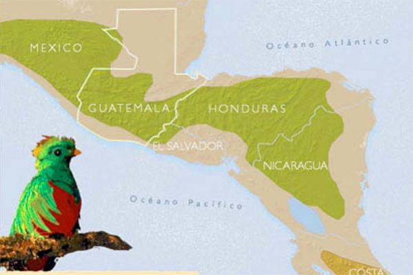 habitat quetzal